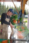 Matt washing carrots for CSA